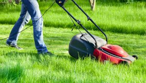 grass-cutting-halesowen